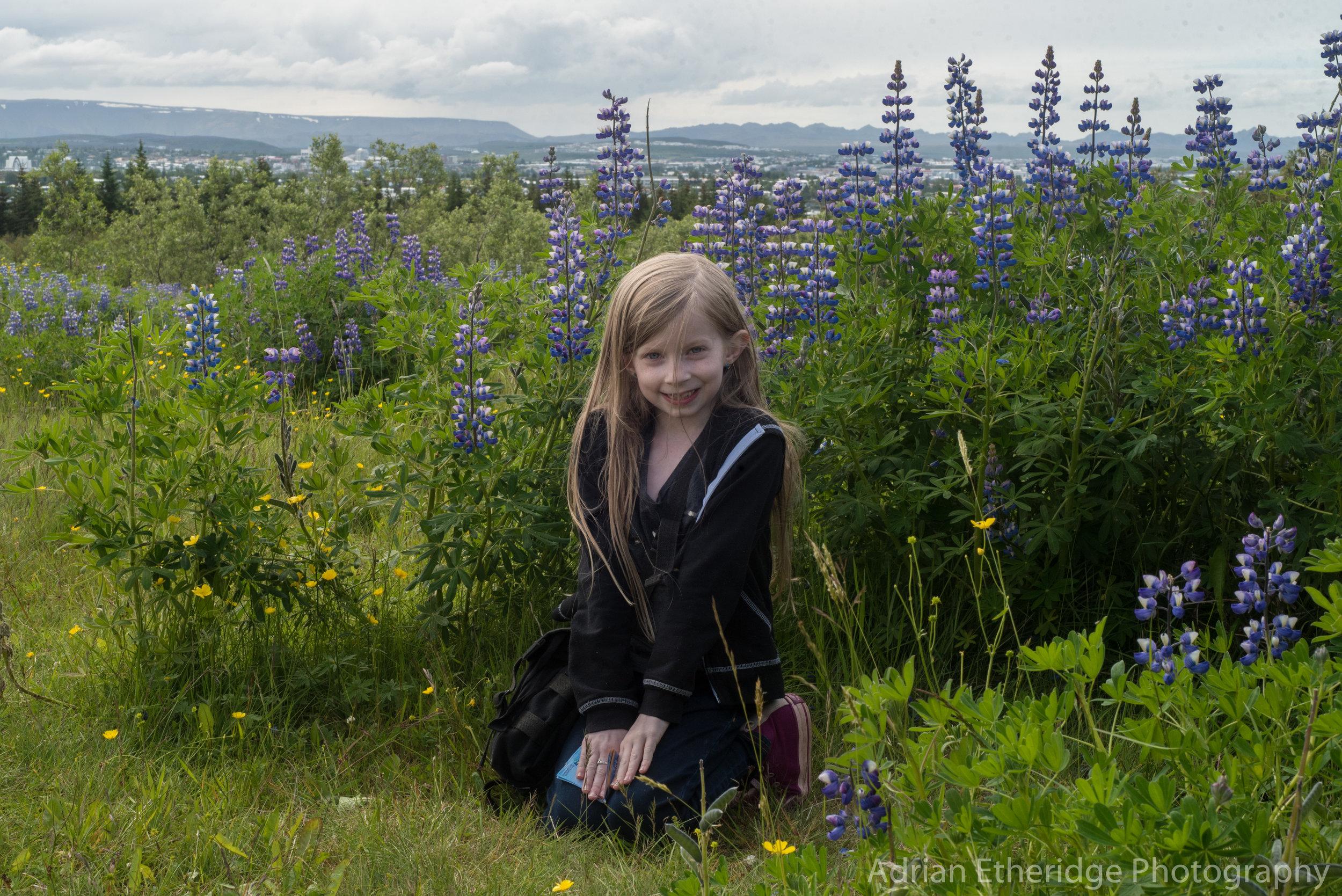 Iceland Day 1-9.jpg