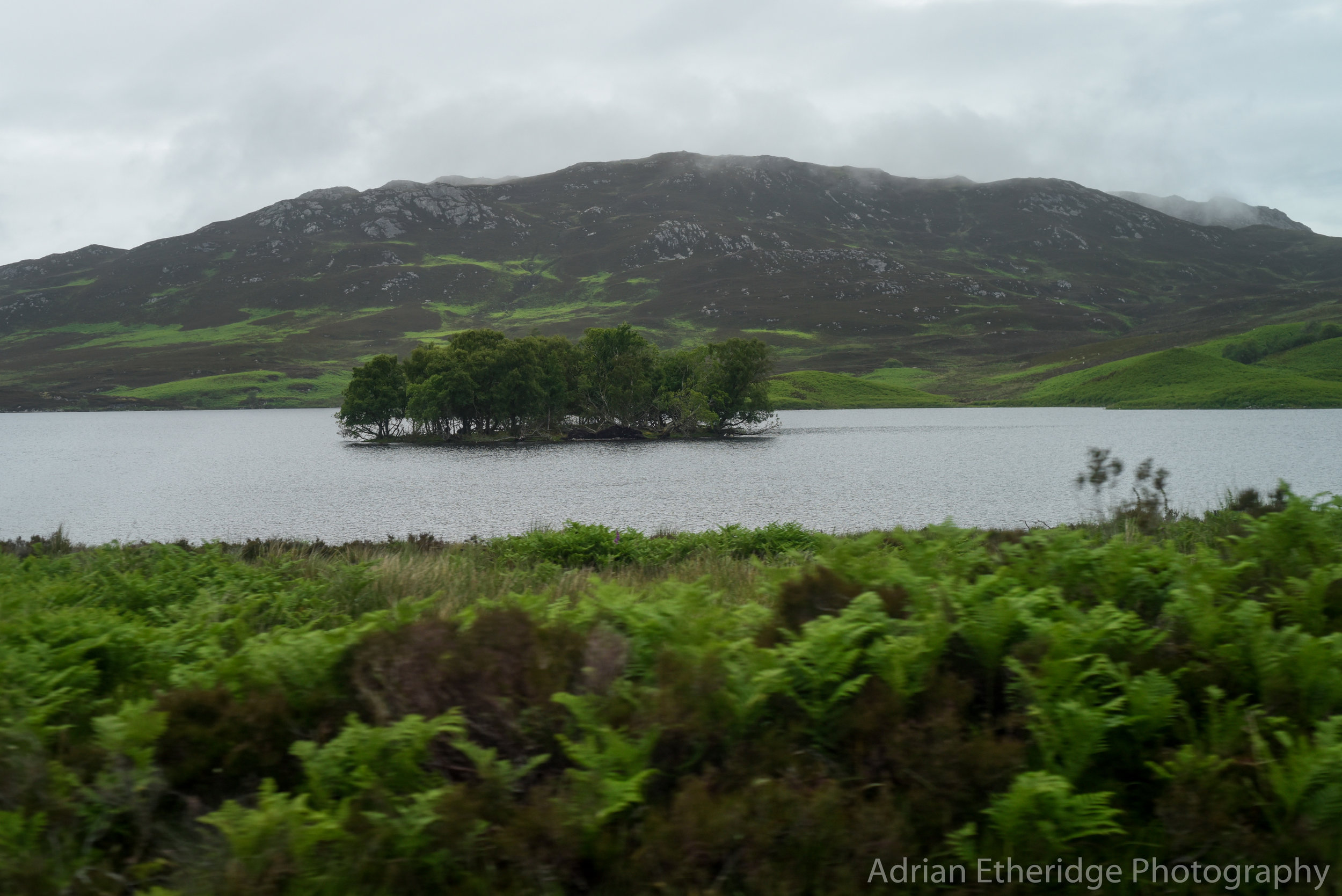 Scotland Day 56-24.jpg