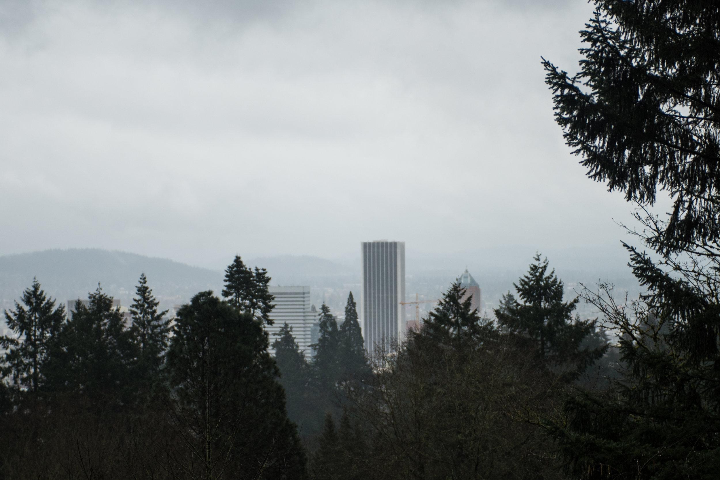 Portland Day 3-16.jpg