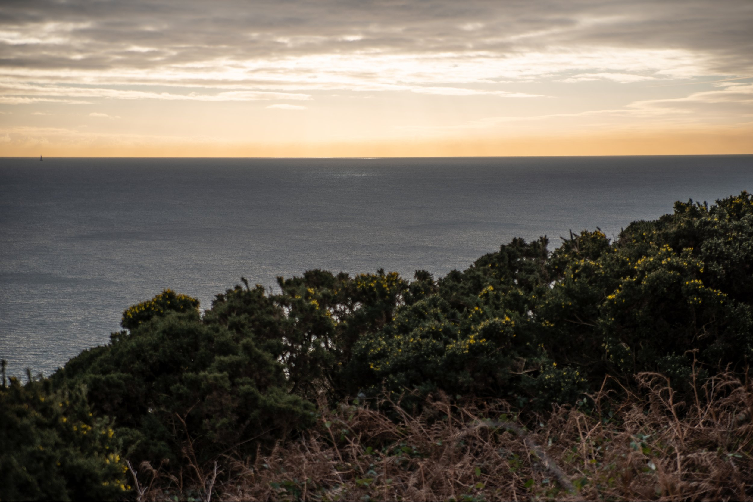 Landscape Photography at Howth Cliffwalk, Ireland
