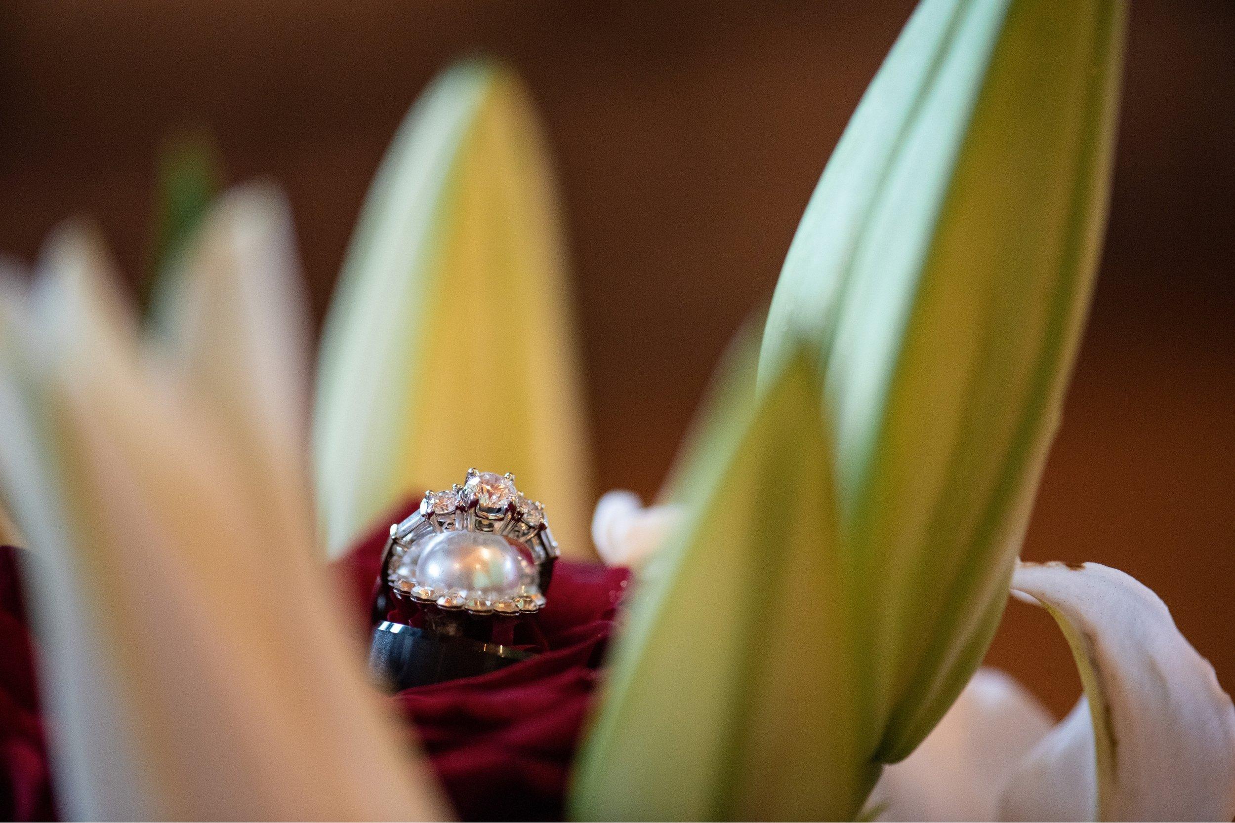 High Vista Wedding - Asheville Vendors  20.jpg
