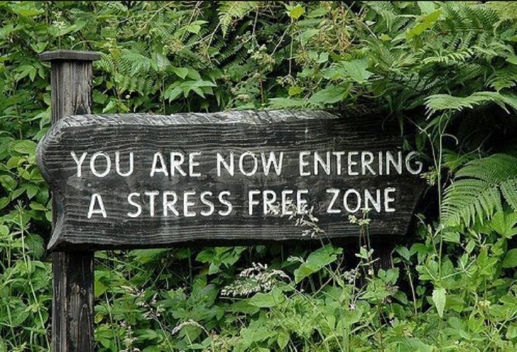 stress-calm-peaceful-mind.jpg