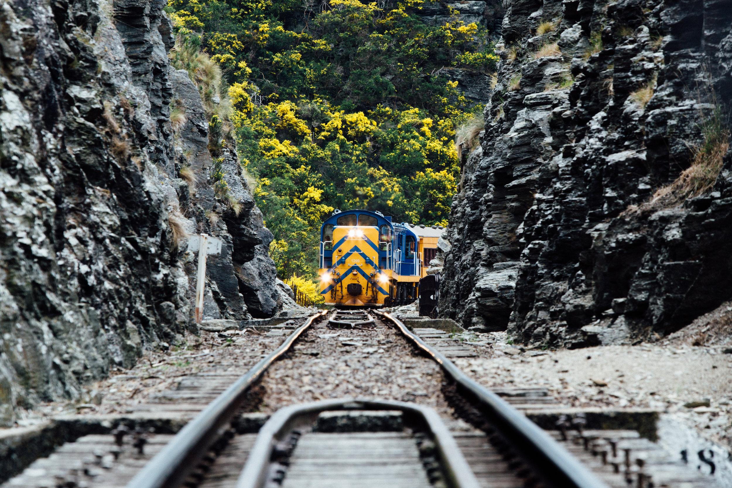 Taeiri Gorge Railway.jpg
