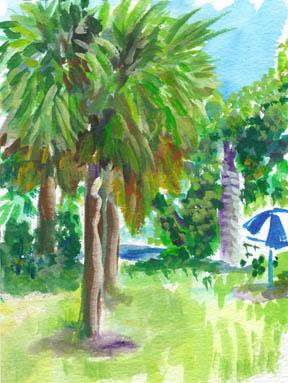 Florida-large.jpg