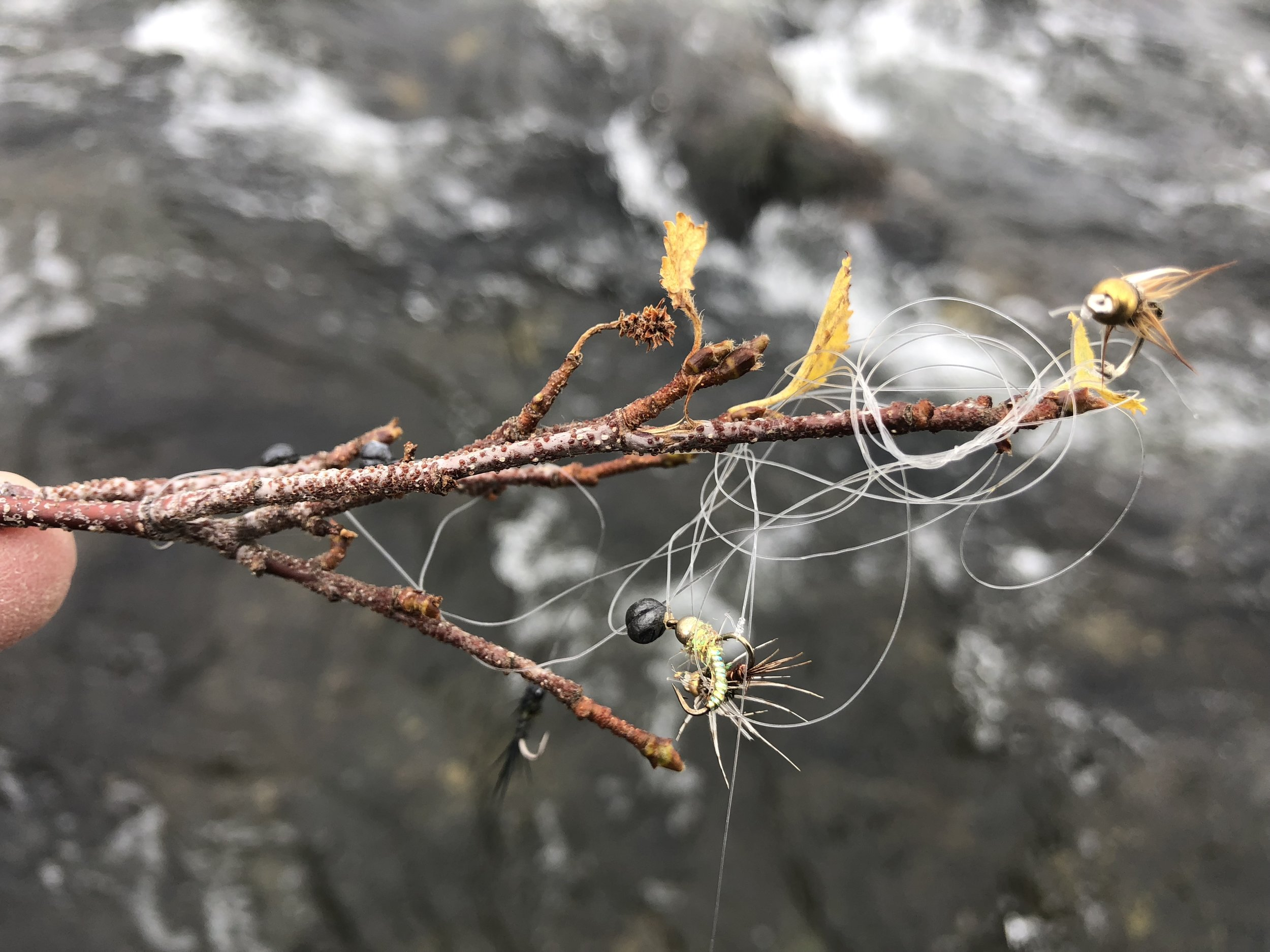 I'm not suggesting to risk your life to retrieve flies, but please do so if it's possible without risks. This mangled limb was only several feet off the bank of The Madison River…even my 7 year old son could have retrieved these flies without the risk of falling in.