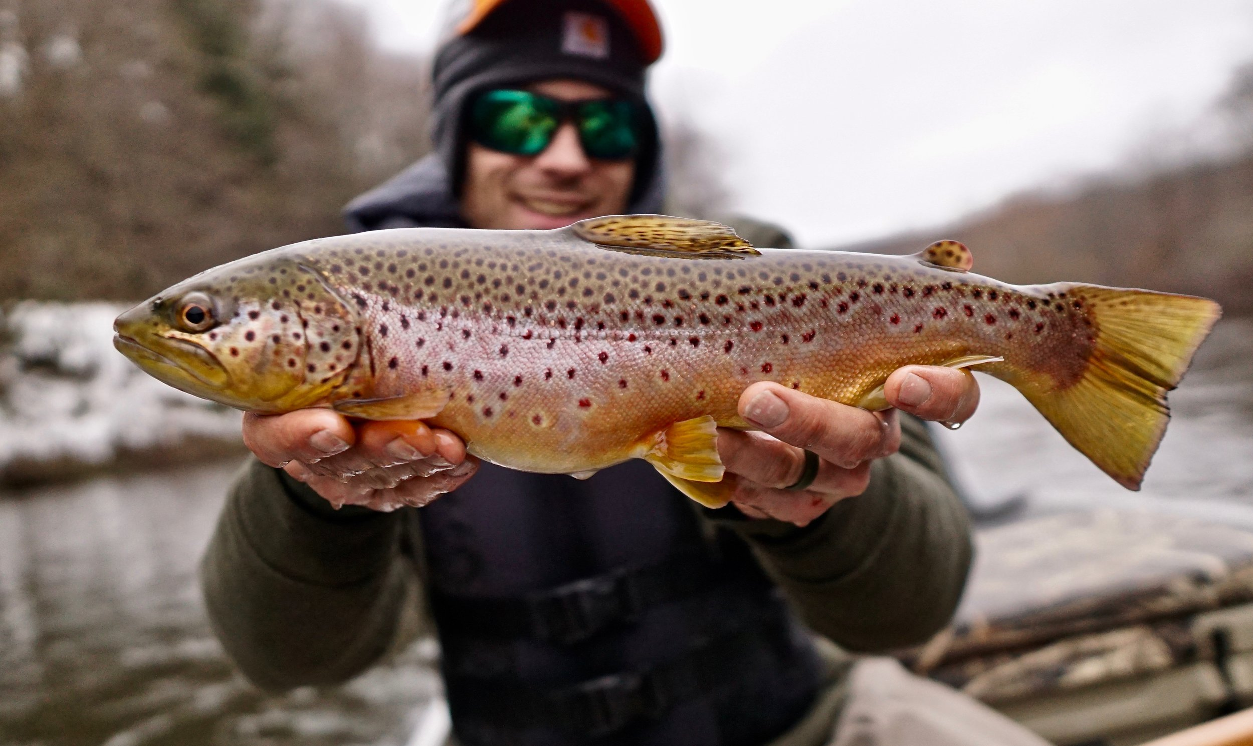"Kris Bretz showing off a health brown, he caught by ""staying within the lines."""