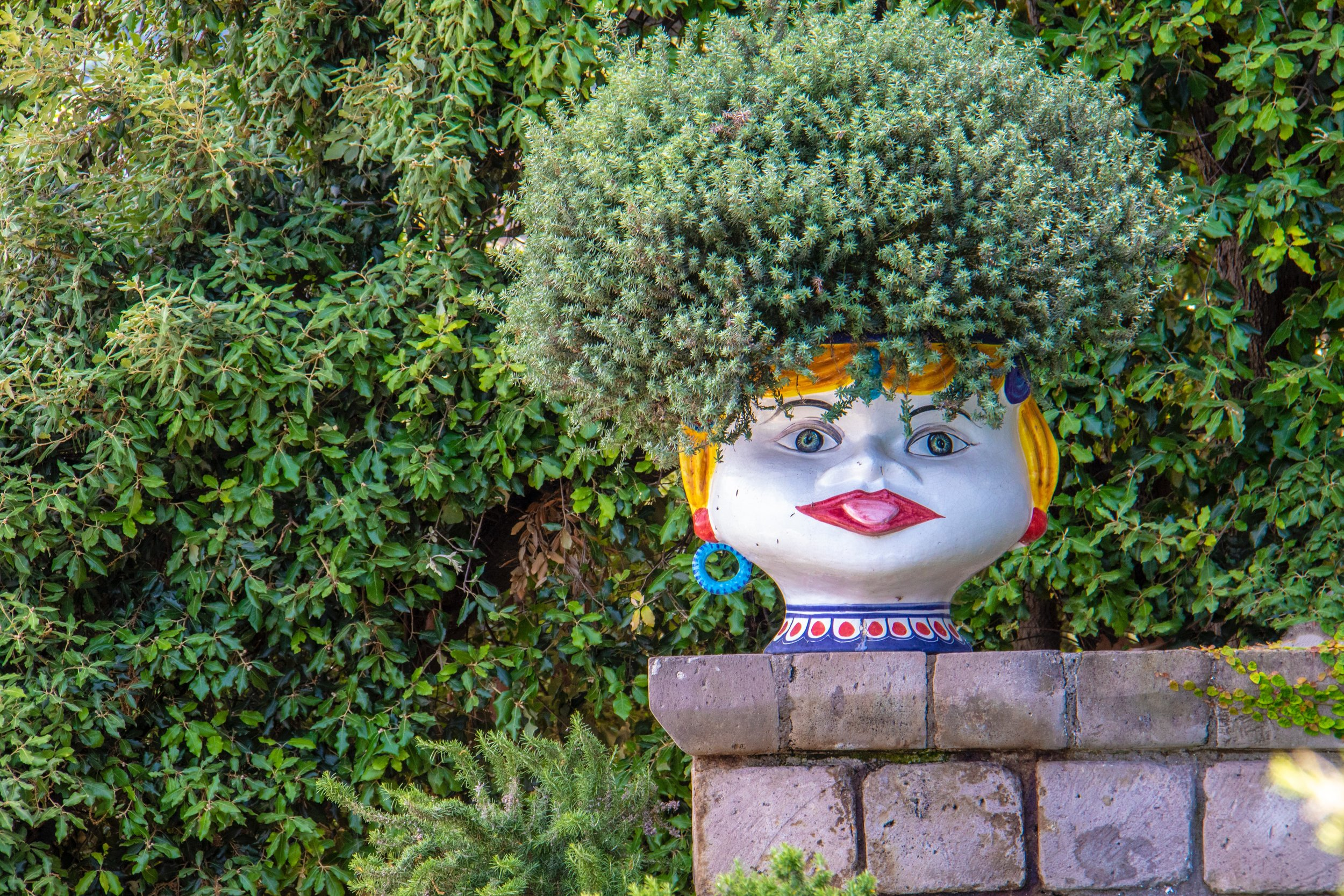 buddha planter.jpg