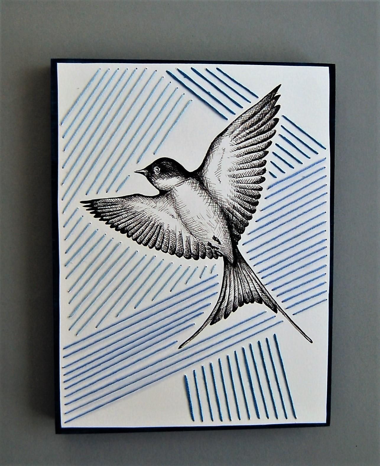 Swallow Study