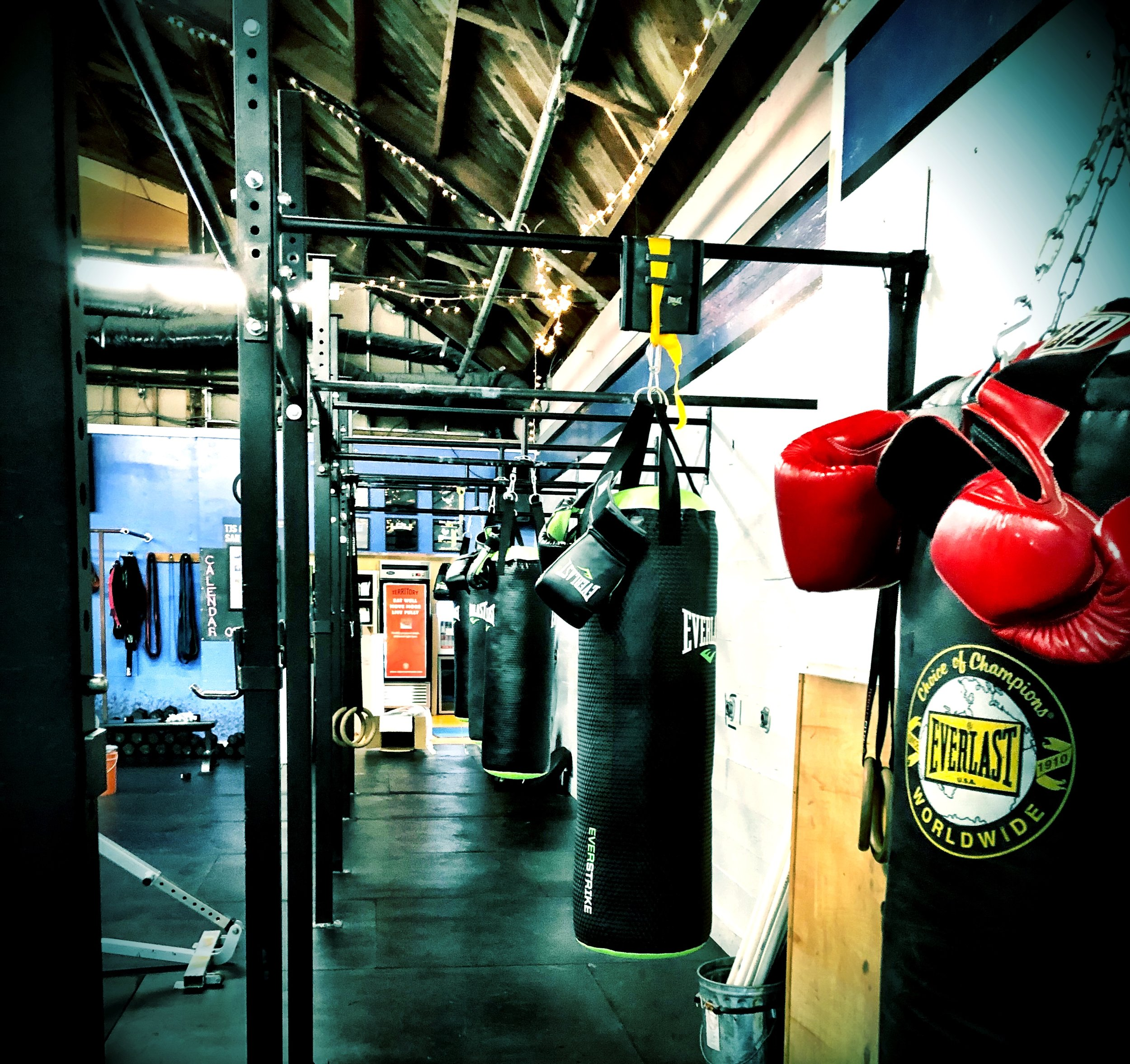 boxing photo for website.JPG