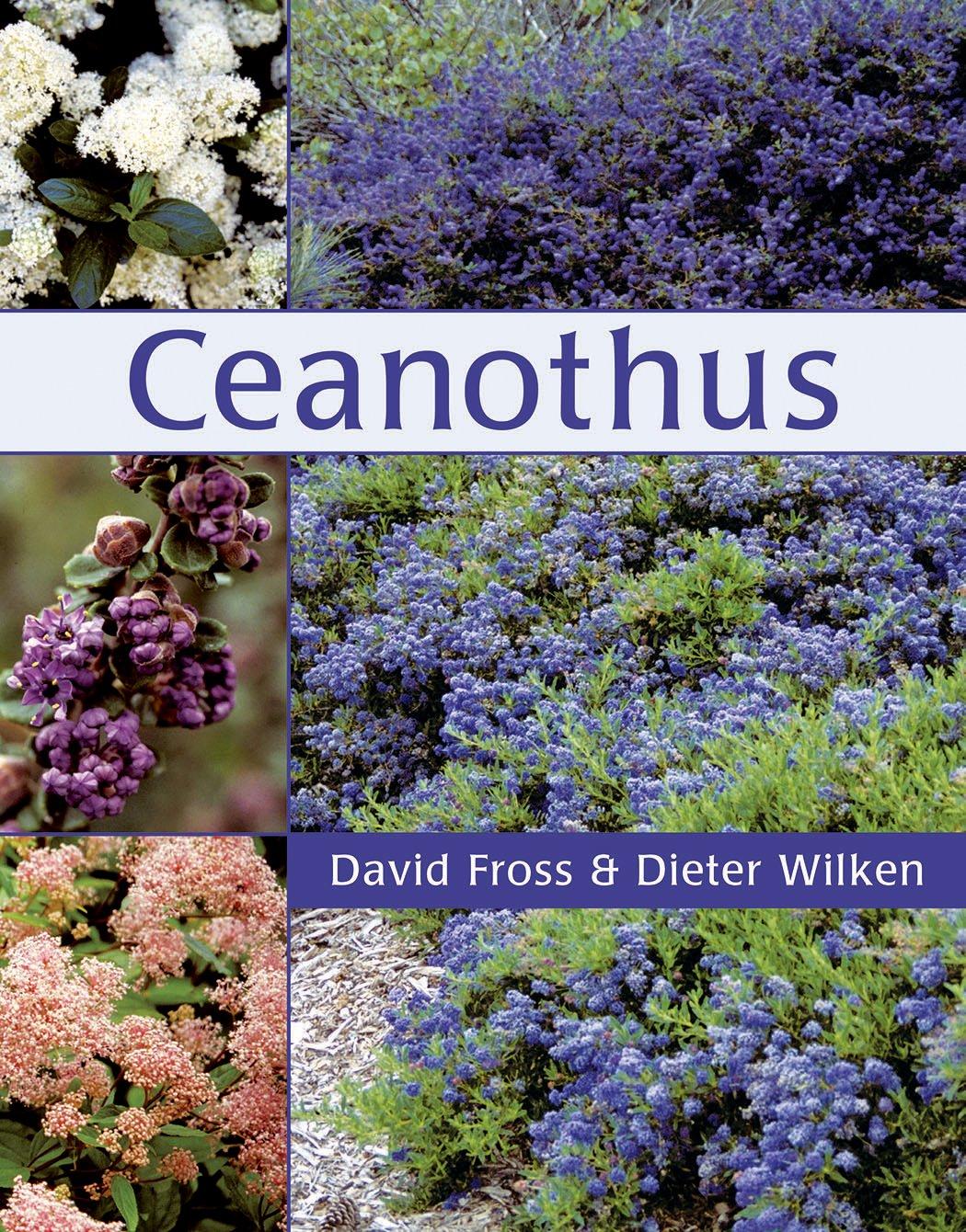 Ceanothus- $38.95