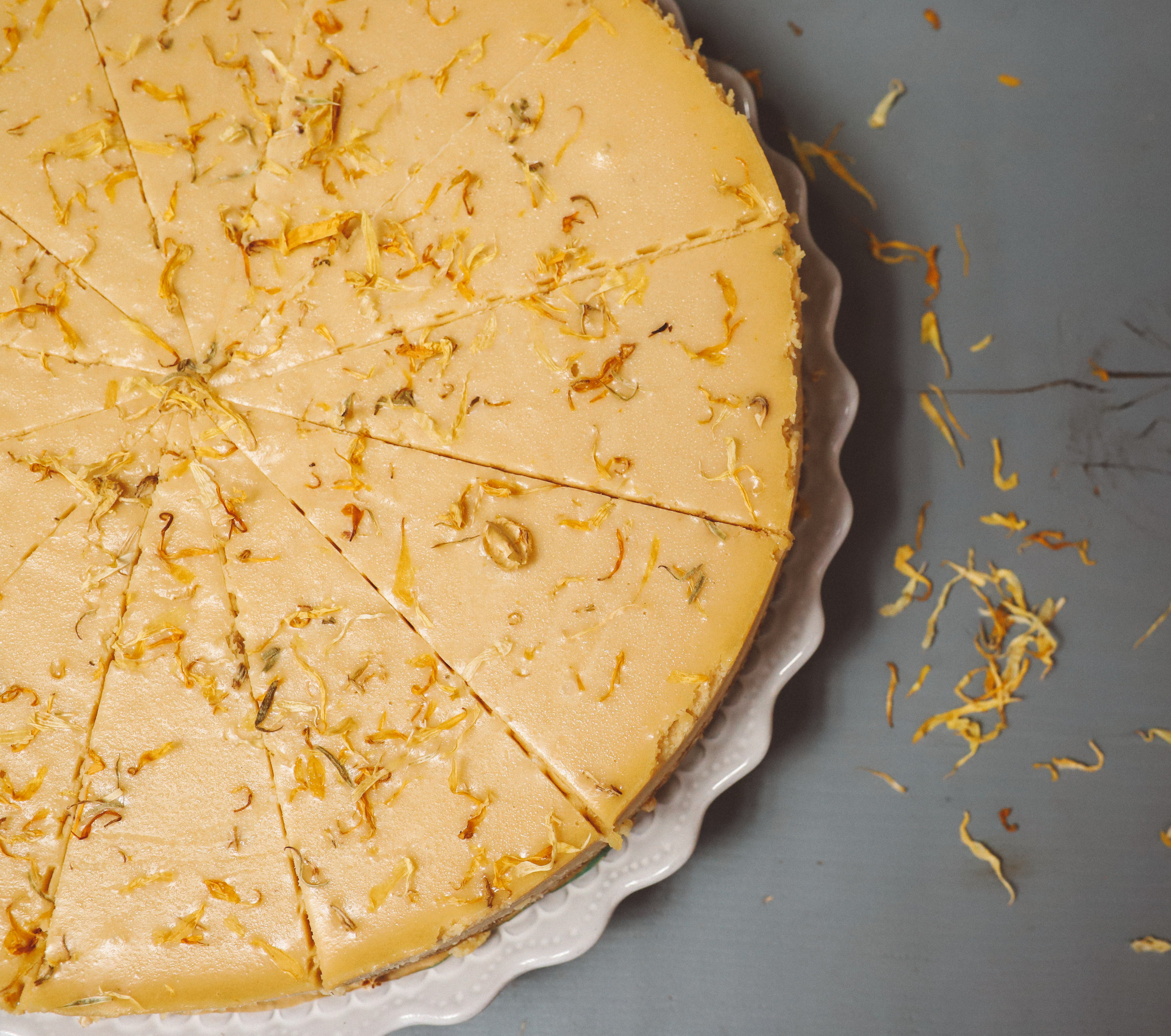 solfeggio-cheesecake-9.jpg