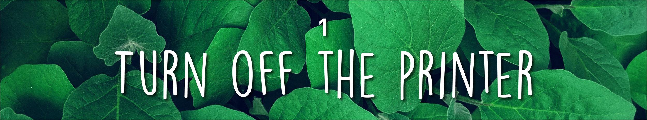 Week34-SustainableMarketing_InBlog_1 copy 13.jpg