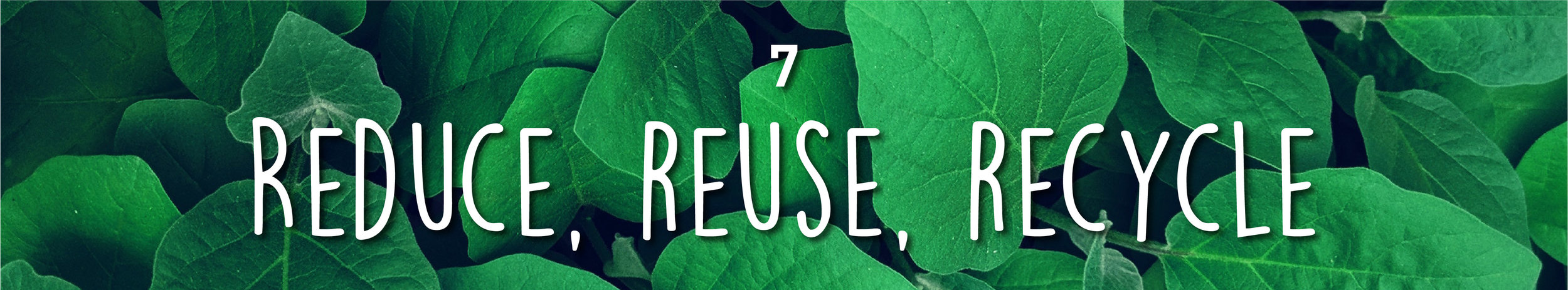 Week34-SustainableMarketing_InBlog_1 copy 19.jpg