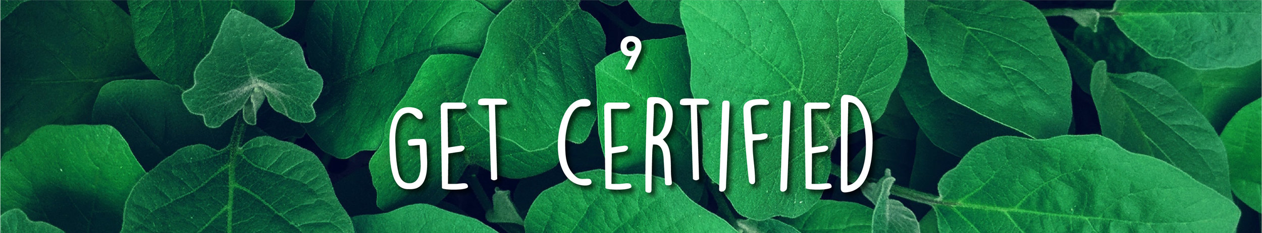 Week34-SustainableMarketing_InBlog_1 copy 21.jpg