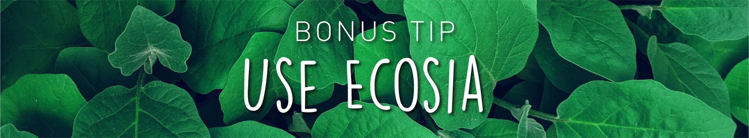 Week34-SustainableMarketing_InBlog_1 copy 25.jpg