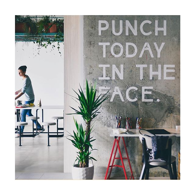 No caption needed! Ha en fin mandag! 👊💕 . . . . #joinelleveclub #happymonday #newweeknewgoals #newweeknewstart #punchtodayintheface