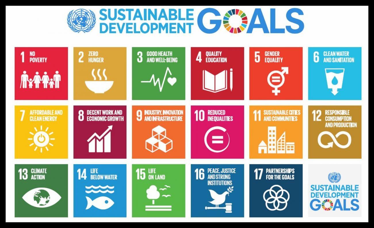 SKIP_SDGs.jpg