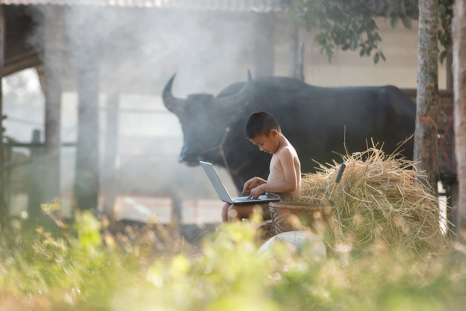 bigstock-Young-Farmer-Playing-Laptop-In-225052447.jpg