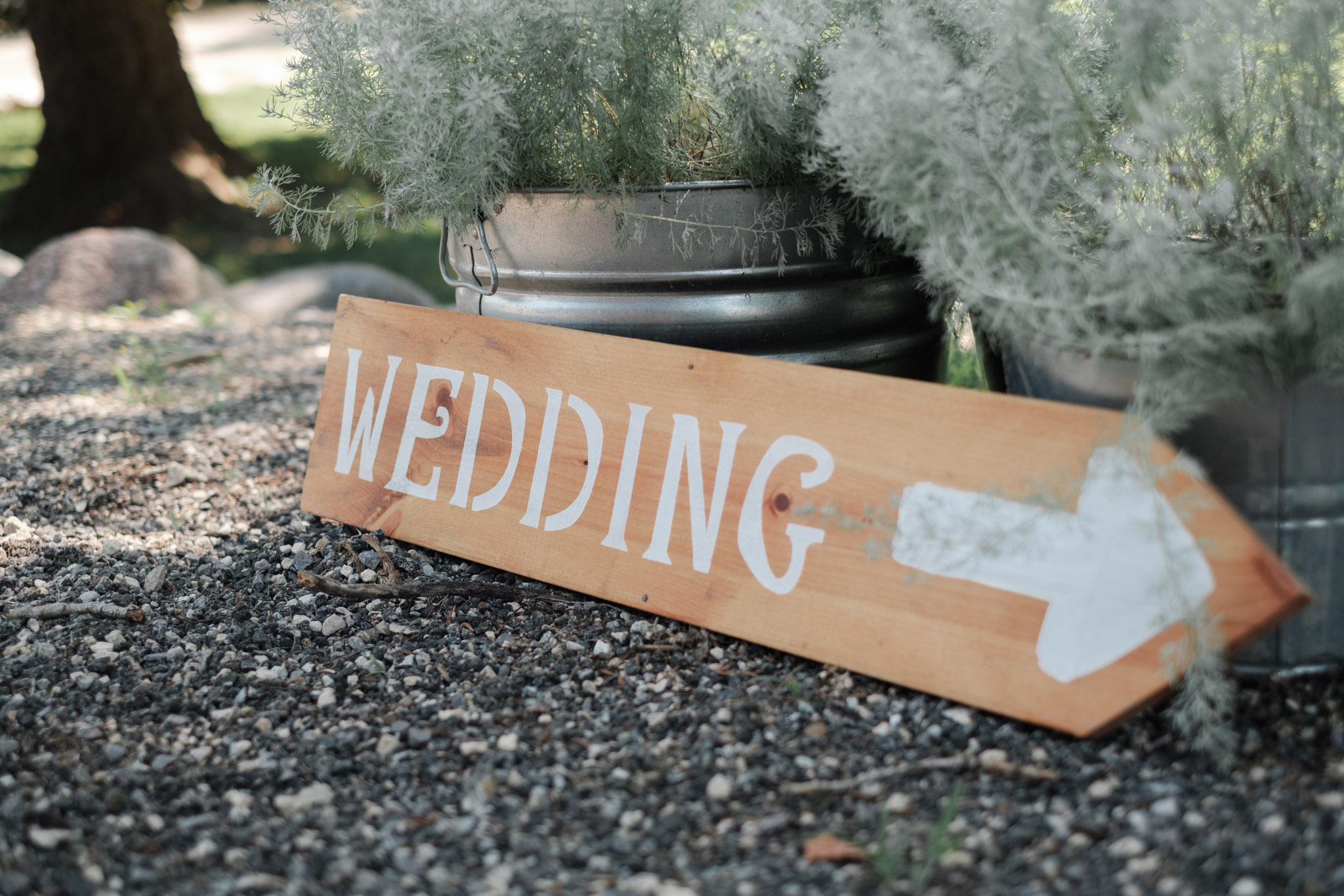 2018 BAP AshleyJake Williams Tree Farm Wedding-13.jpg