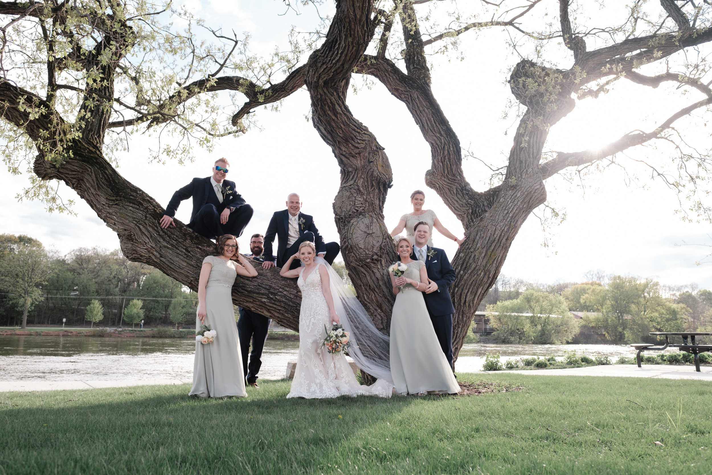 wedding party with bride and groom climbing an oak tree on fox river next to the brix