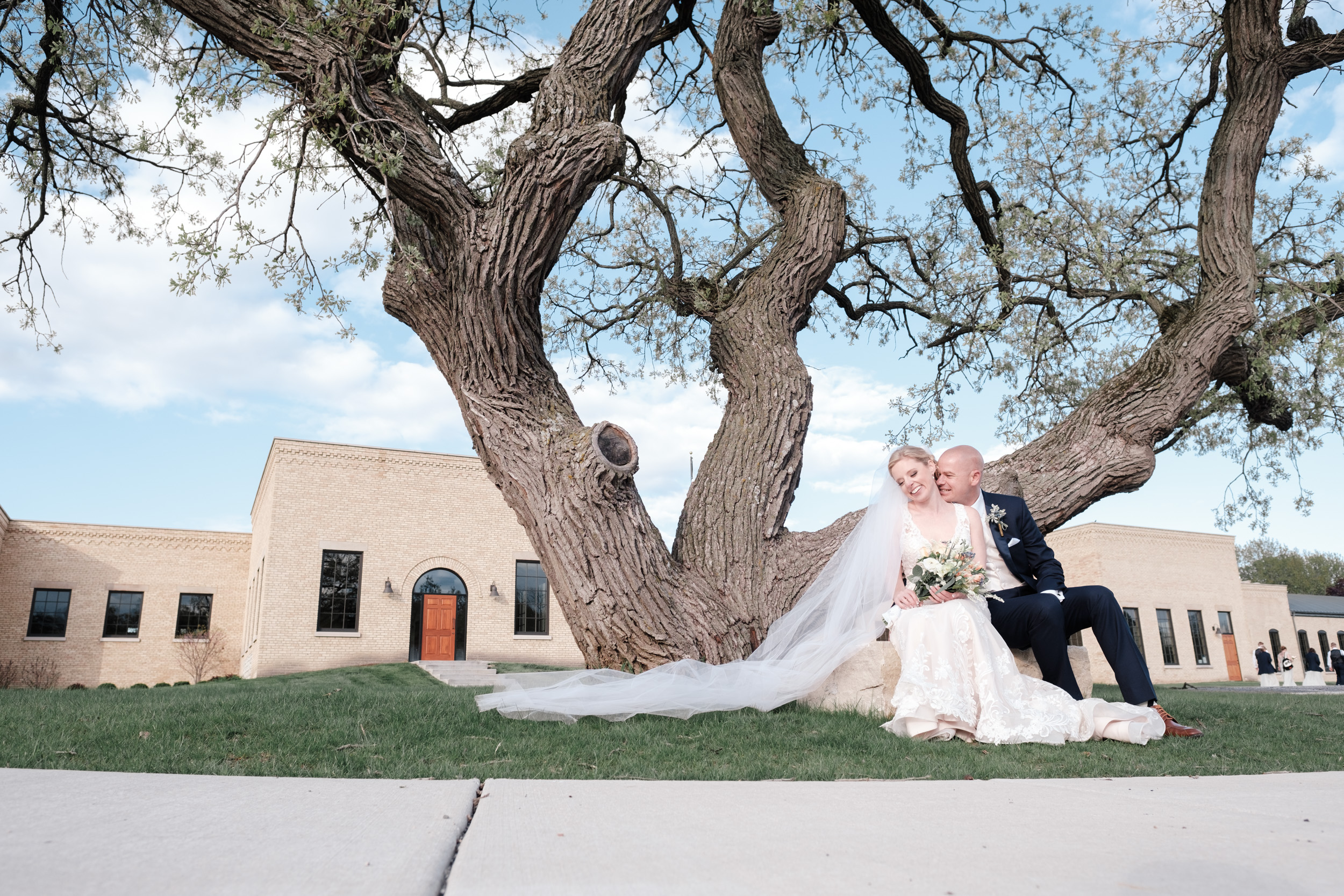 bride and groom mbrace on wedding day infront of oak tree at the brix