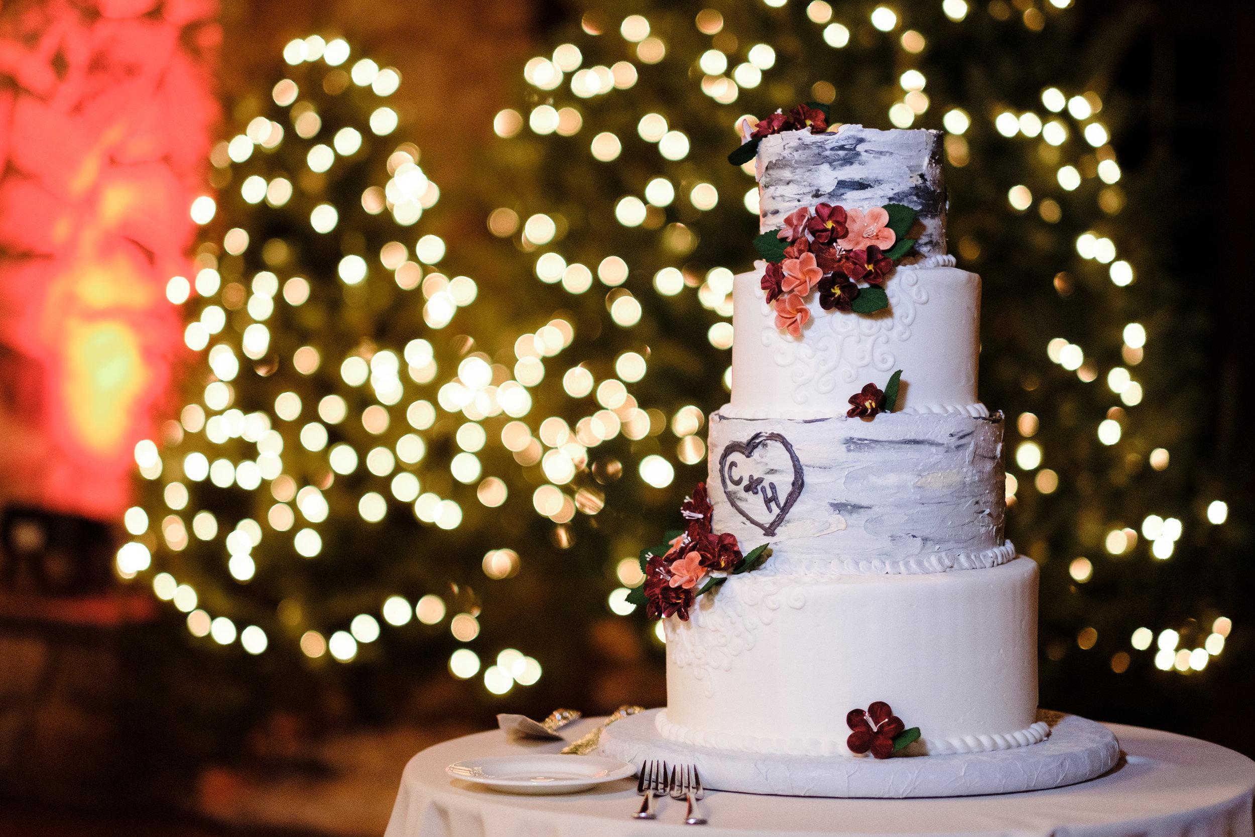 18-12-28 Corinne-Henry-Pavilion-Wedding-397.jpg