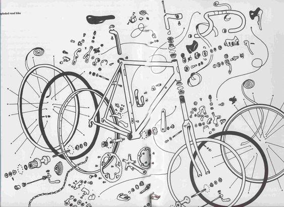 The Cyclist's Tale 1.jpg