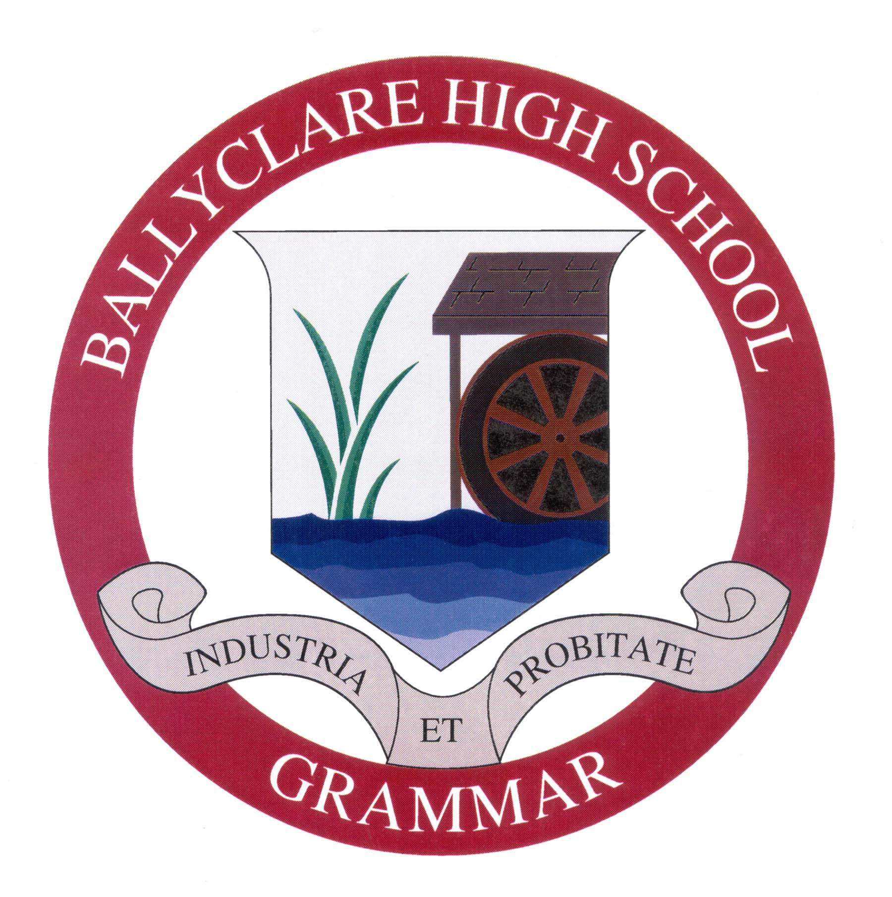 BHS school badge hi res.jpg