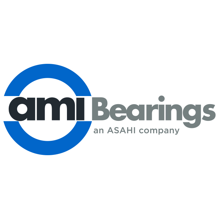 ami bearings.jpg