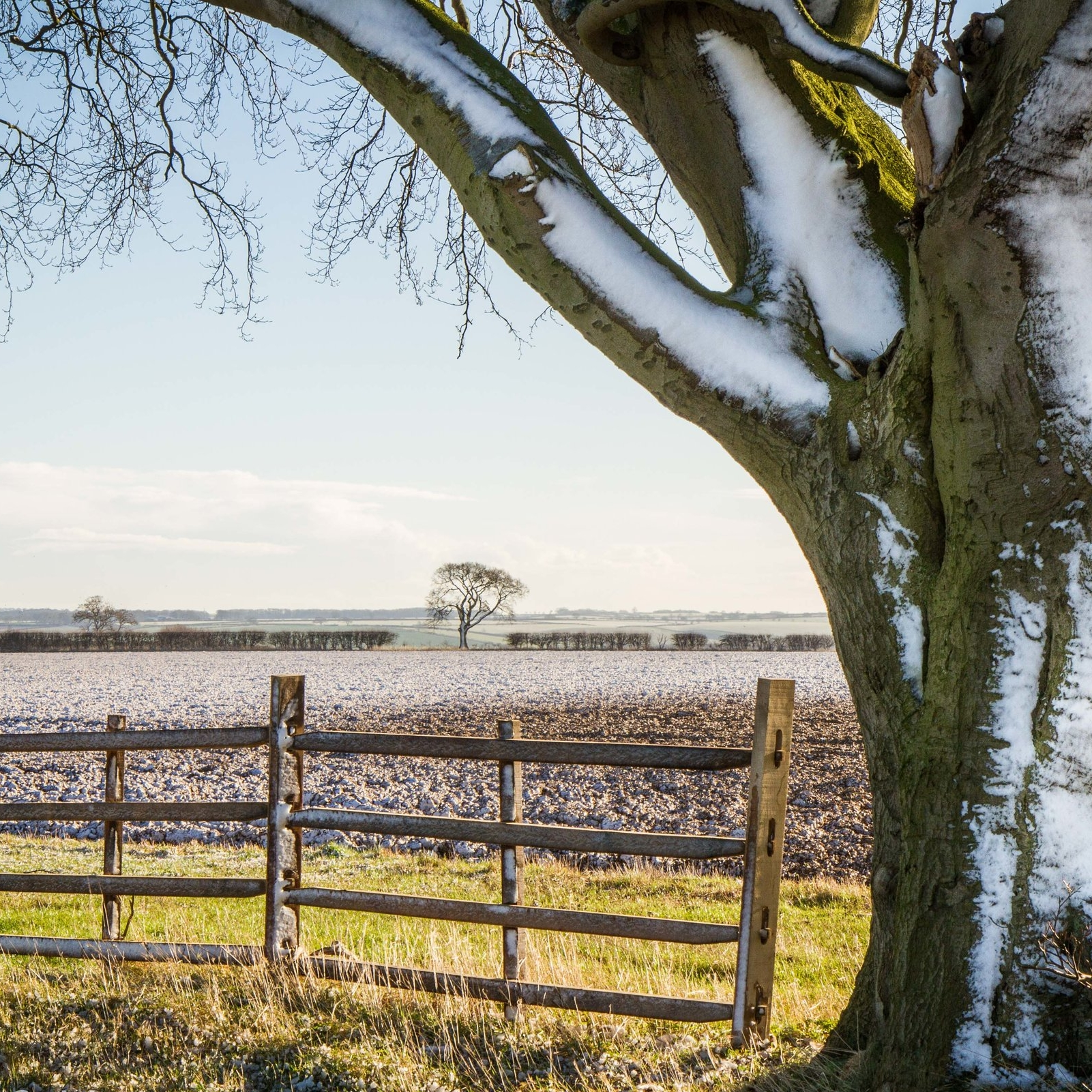 Lincolnshire Wolds in Winter