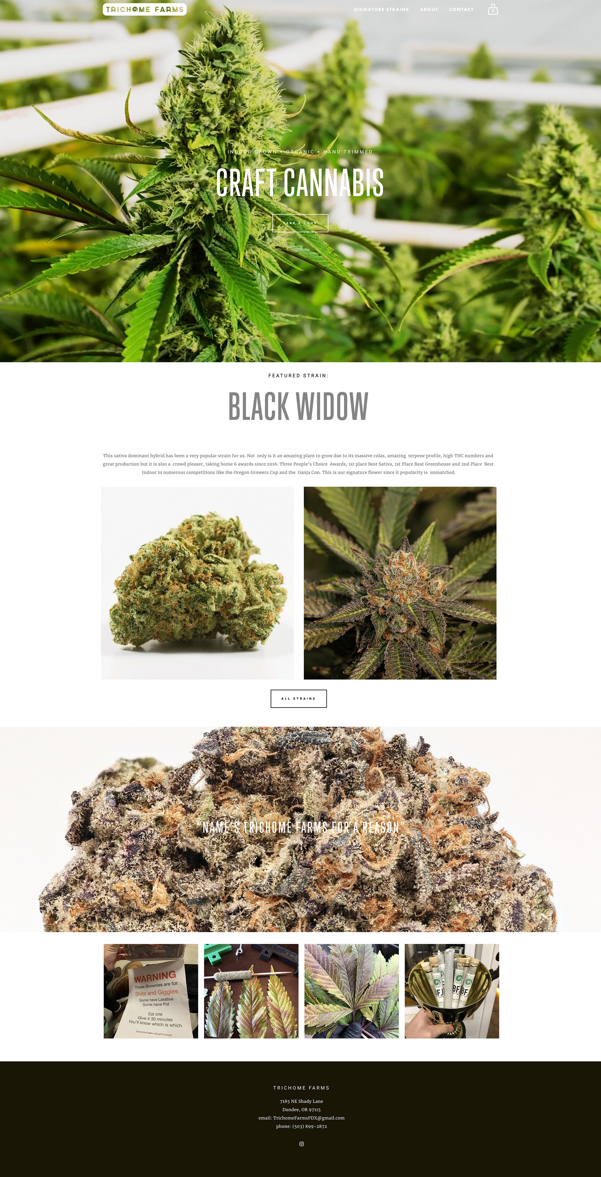 trichome-website.jpg