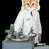 laa_cat_laithe_160.png