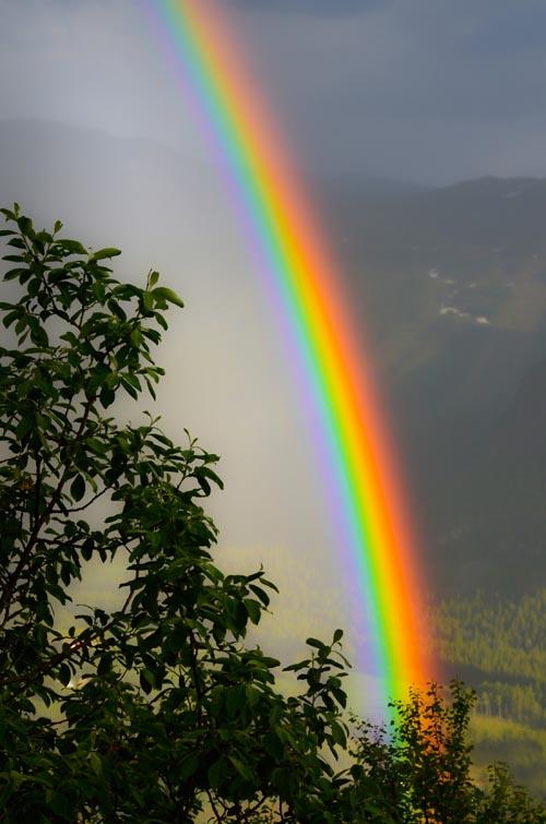 rainbow_33826987 500px.jpg