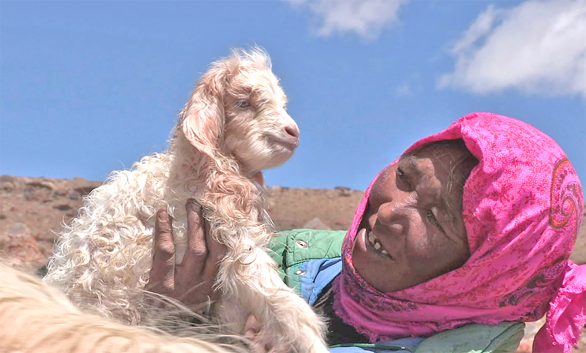 Tsering with goat.jpg