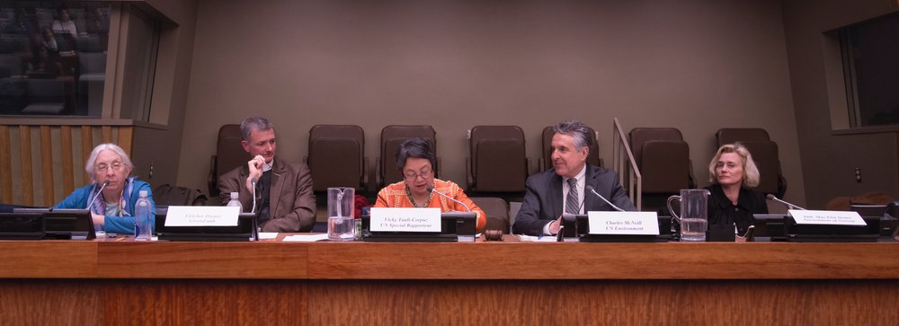 Above: Vicky Tauli-Corpuz, UN Special Rapporteur on the Rights of Indigenous Peoples and member of the Global Steering Committee for the Interfaith Rainforest Initiative, joins other panelists at the briefing and consultation.