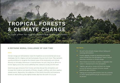 ENG | FRAN | ESP | PORT | IND  An issue primer on the linkages between tropical forests and climate change, and the potential that ending global deforestation holds for meeting the goals of the Paris climate agreement.