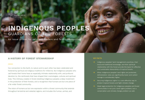 ENG | FRAN | ESP | PORT | IND  An issue primer on the historical role that indigenous peoples have played around the world in forest protection, and how securing land rights is a powerful strategy for forest protection and climate mitigation.