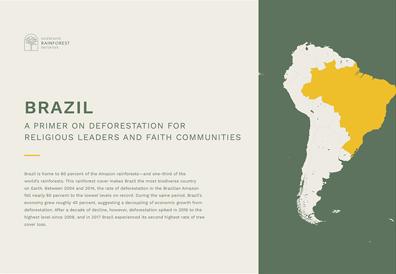 ENG | FRAN | ESP | PORT | IND  A fact sheet on the state of forests, the drivers of deforestation and the existing initiatives to protect forests in Brazil.