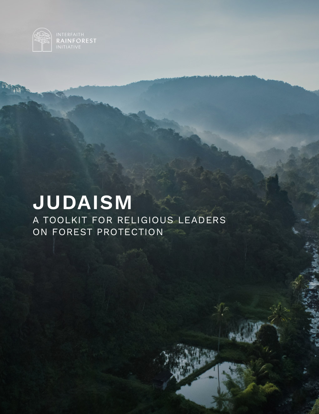 Spiritual reflections, sample prayers and liturgies, talking points and a lesson plan on forests for the Jewish faith.