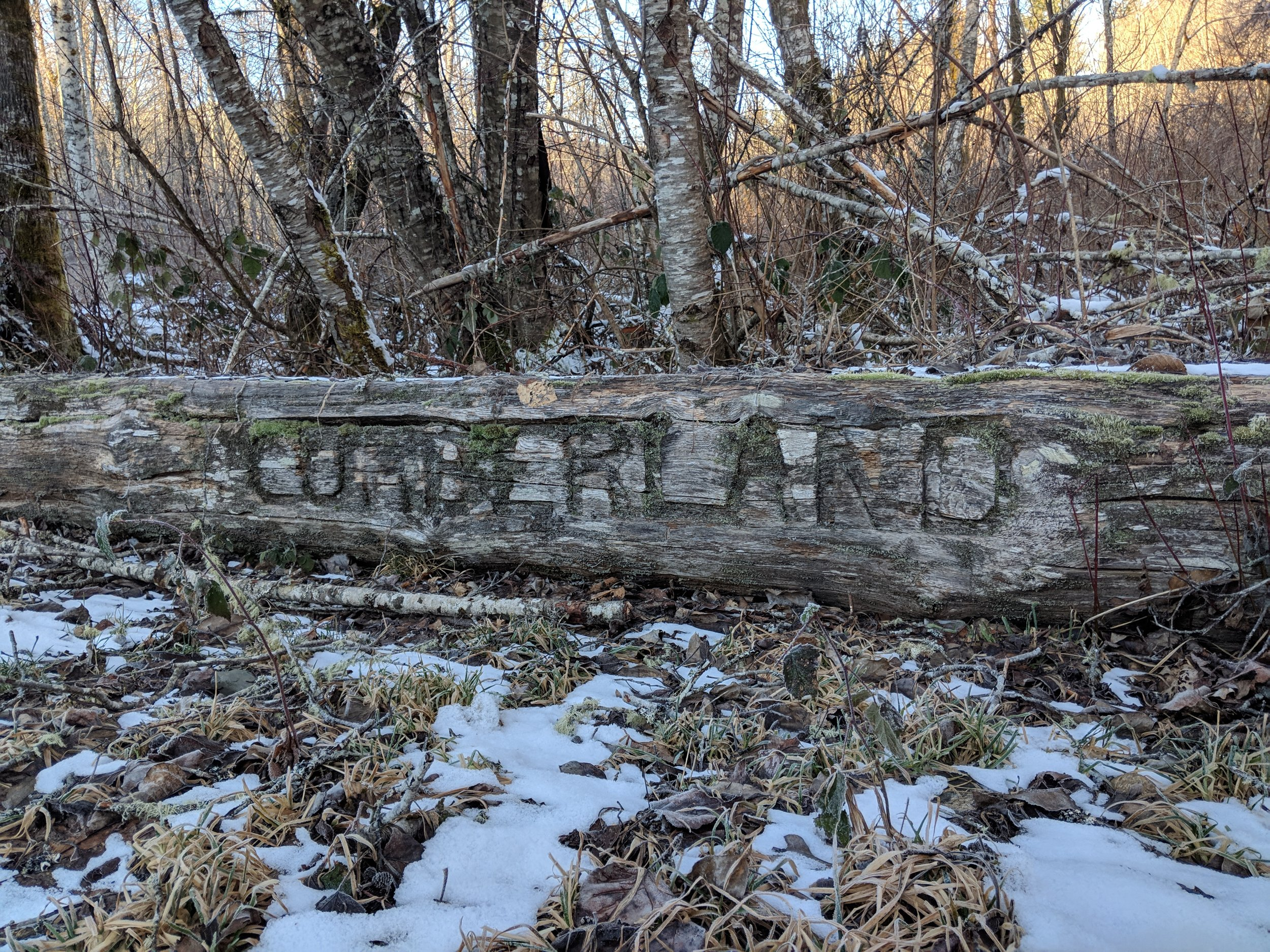 Cumberland woods log sign.jpg