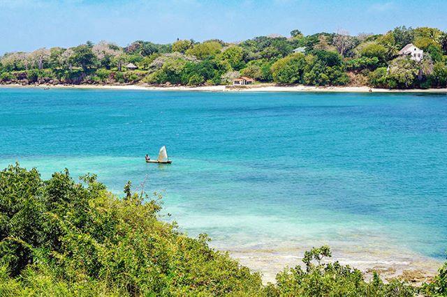 #TheWaterfrontResidence #WaterfrontResidenceMombasa #Mombasa #LuxuryHotel #LuxuryTravel #LuxuryResidence #Luxuryapartments #Boutiquehotels #smallluxuryhotelsoftheworld #luxurytraveler #luxuryMombasa #tophotels #destinationmombasa #MagicalKenya #whyilovekenya