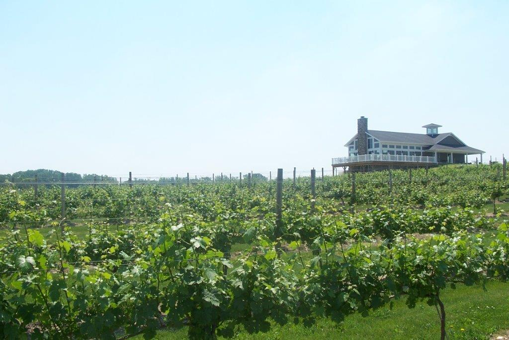 - 8403 Mason Rd. (1 mi. east of Rt. 61 at corner of Humm Rd.)Berlin Heights, OH 44814Click for Map419-588-3179quarryhillwinery.orgLake Erie Shores & Islands Wine TrailErie County