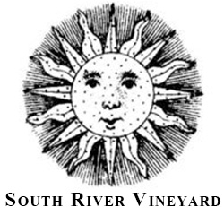 South River Vineyard