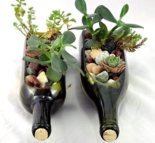 wine bottle planter (002).jpg
