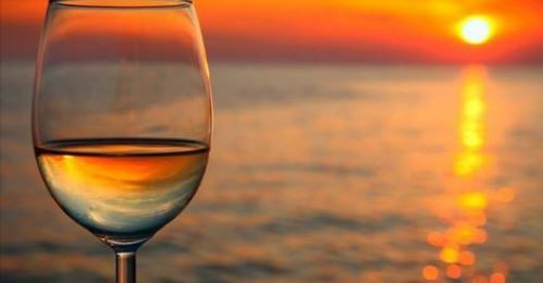halliday's winery summer kickoff.JPG