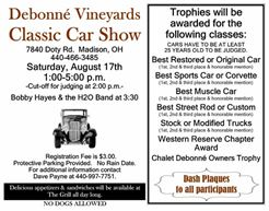 debonne classic car show.JPG