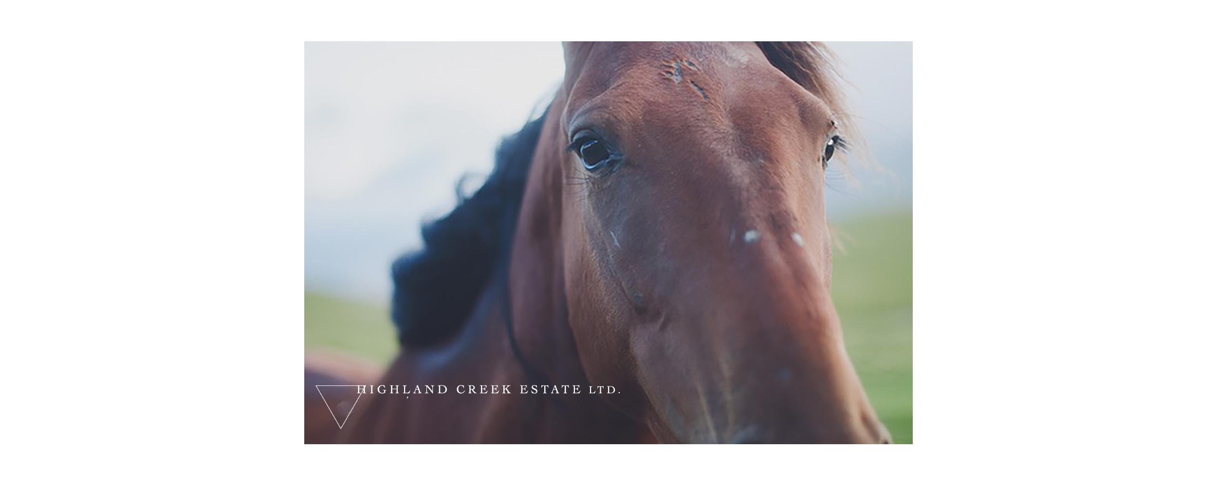 HIGHLAND CREEK ESTATE Equestrian.png