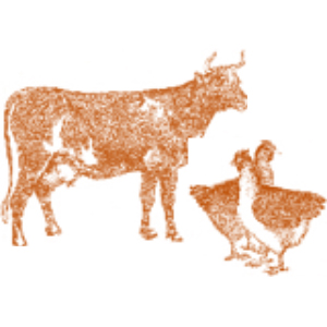 dairy&poultry.jpg