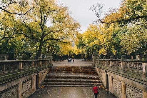 central park walk manhattan new york city ny