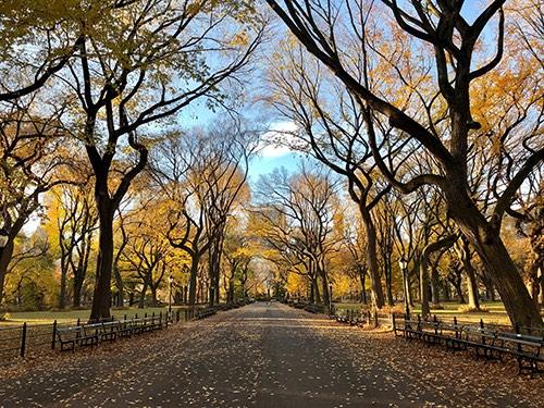 central park marll manhattan new york city ny